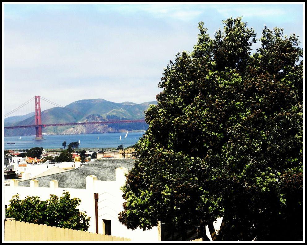 San_Francisco_NotOnlyTwenty